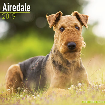 Airdale